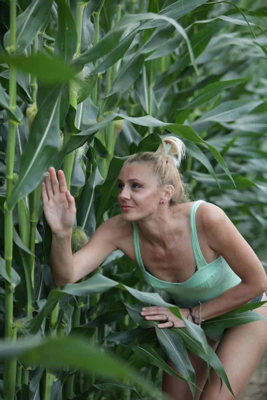 Farm Or Gardening: Achieving Success With Organic Farming