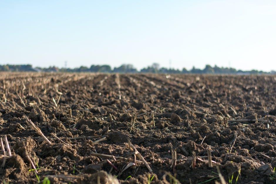 a soil