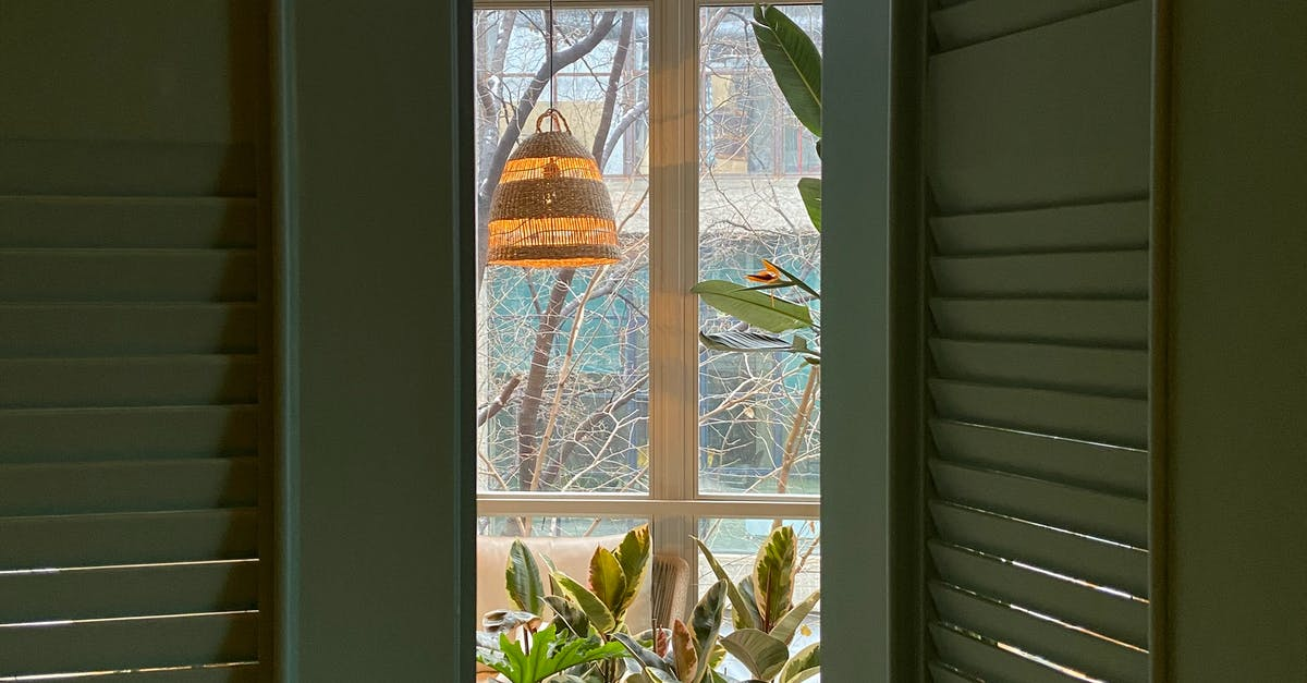 A vase of flowers on a window sill